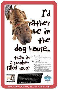 GGTC Big Tobacco Pets 2020